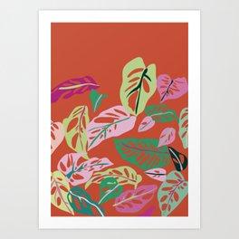 Monstera Obliqua Art Print