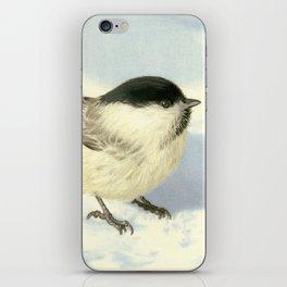 Chilly Chickadee iPhone Skin