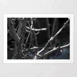 Thorns blue Art Print