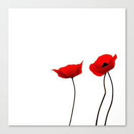 Simply poppies Canvas Print