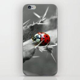 ladybug I iPhone Skin