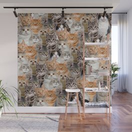 cats pattern lot of funny animals cheesy crazy Wall Mural