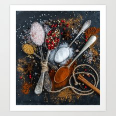 spices Art Print