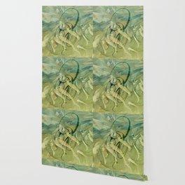 Aengus Wallpaper