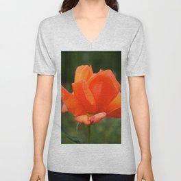 Orange English Rose Unisex V-Neck