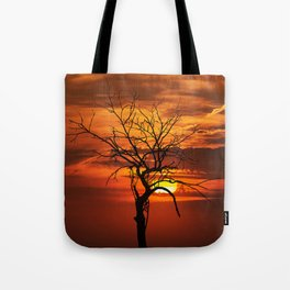 Scary witchy naked tree on sunset Tote Bag
