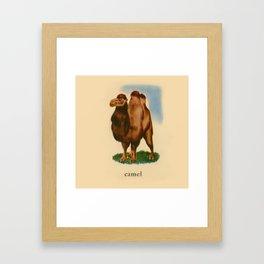 C is for Camel Framed Art Print