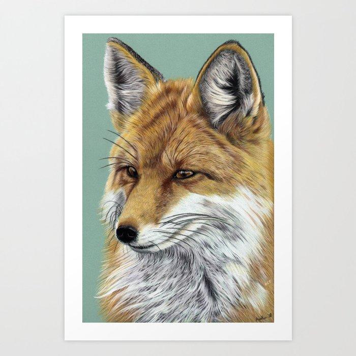 Fox Portrait 01 Art Print