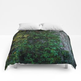 Ivy upon the Tree (Color) Comforters