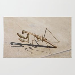 Praying Mantis and Shadow Rug