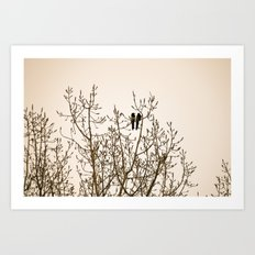 A quiet moment Art Print