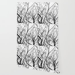 FOLIAGE SERIES Minimal branches in black and white Wallpaper