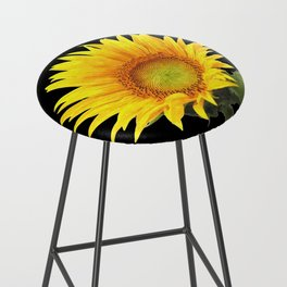 Sunflower Bar Stool