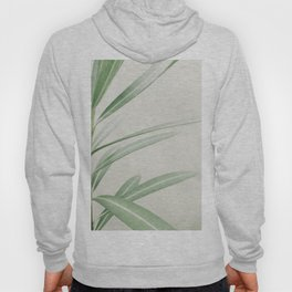 Natural Background 62 Hoody