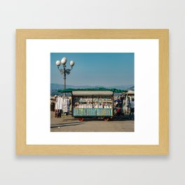 Tacky Tourist Framed Art Print