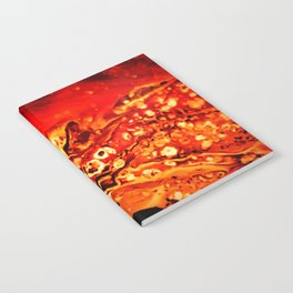 Ressa Notebook
