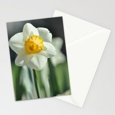 Daffodil Stationery Cards