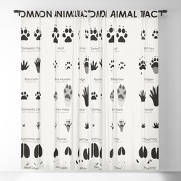 Animal Tracks (Hidden Tracks) Blackout Curtain