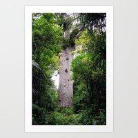 The World's Oldest Wood, Ancient Kauri Art Print