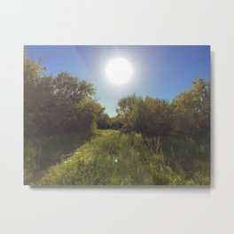 Sunshine on the path Metal Print