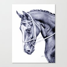 Nureyev (US) - Thoroughbred Canvas Print
