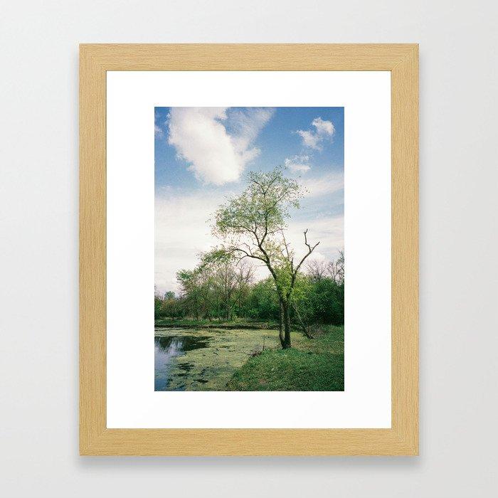 Earth Tones Framed Art Print