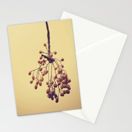 Autumn life (IV) Stationery Cards