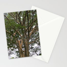 The Mystical Magic of Trees 4 Stationery Cards