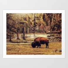 BUFFALO AND RIVER Art Print