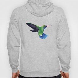 Multi-Color Abstract Hummingbird Hoody