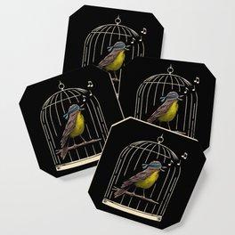 Follow the Birds Coaster