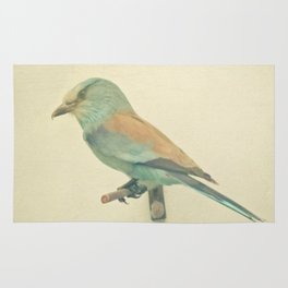 Bird Study #2 Rug