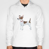 jack russell Hoodies featuring Jack Russell Terrier by Cathy Brear