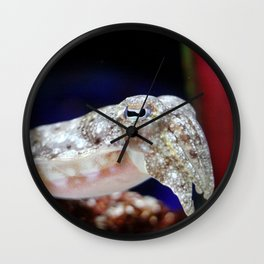 cuttlefish Wall Clock