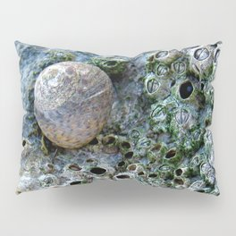 Nacre rock with sea snail Pillow Sham