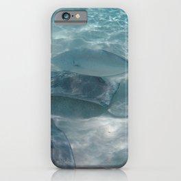 Stingray city iPhone Case