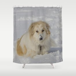 Patricia the Snow Dog Shower Curtain