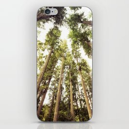 The Canopy iPhone Skin