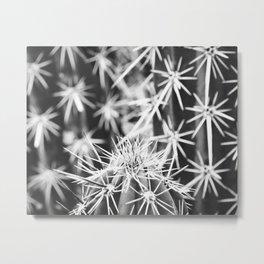 Spine Tingling Metal Print
