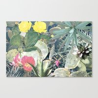 cacti Canvas Prints featuring CACTI by Beth Hoeckel