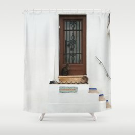 Two cats on White Stairs Shower Curtain