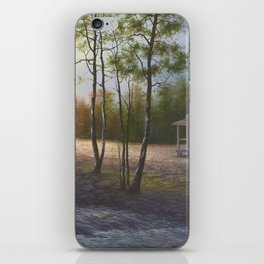 Pioneer Living iPhone Skin