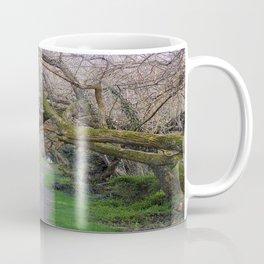 Tree tunnel at Wye Island | Eastern Shore, Maryland Coffee Mug