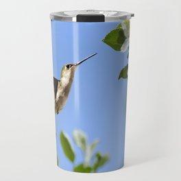 Spring Hummingbird Travel Mug