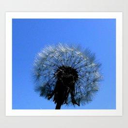 Dandelion's Wish Art Print