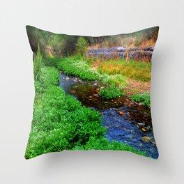 Gentle Stream at the Botanical Gardens Throw Pillow