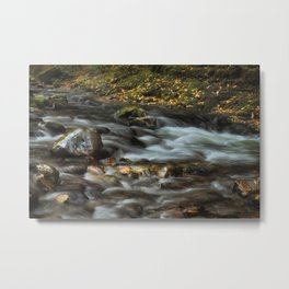 The Afon Pyrddin Metal Print