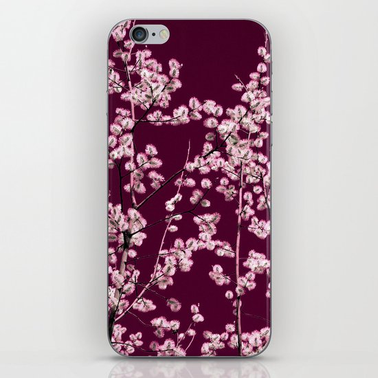 willow catkin III iPhone & iPod Skin