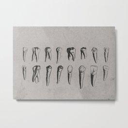 Vintage Dental Diagram of Teeth, in Black, Grey, Brown Metal Print