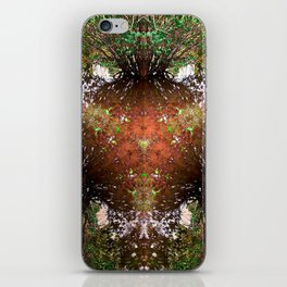 A Call For Calm No 1 iPhone Skin